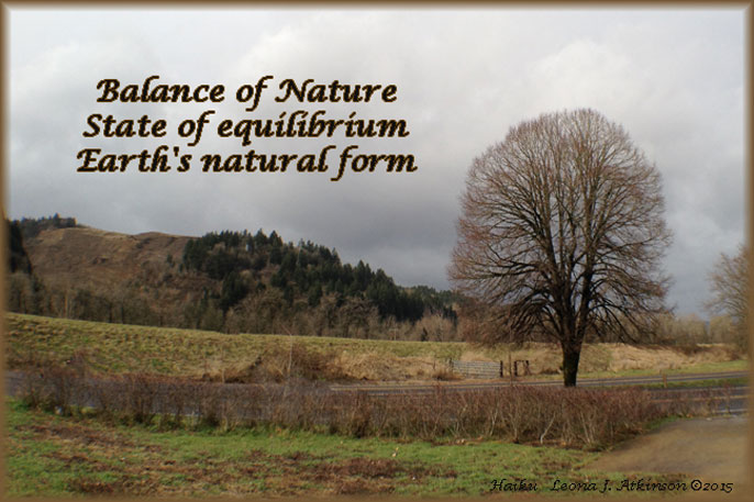 Balance of Nature--Haiku