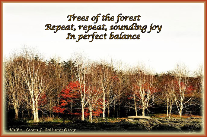 Forest trees, joy, nature, Haiku
