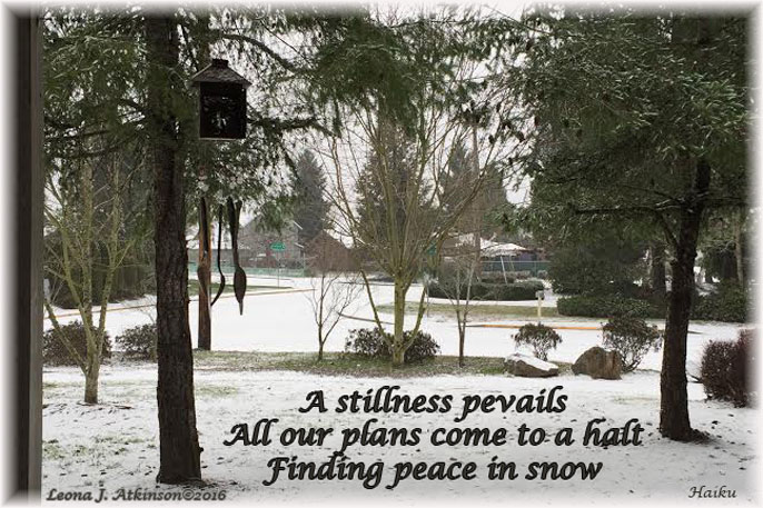 Finding Peace in the snow--Haiku