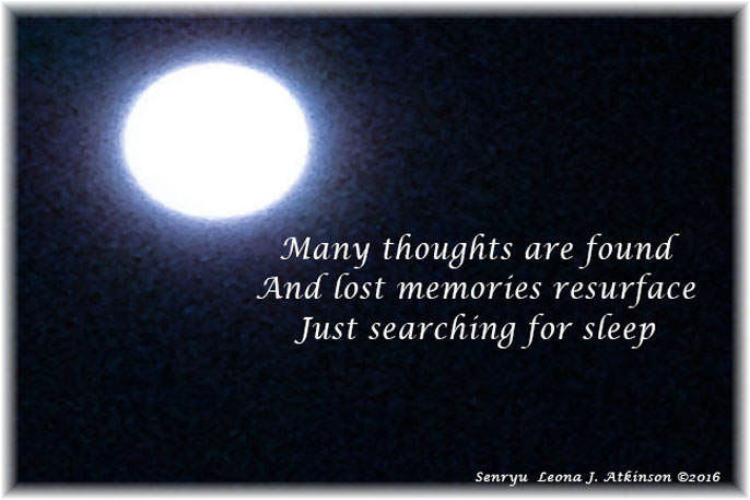 searching for sleep--Senryu poem