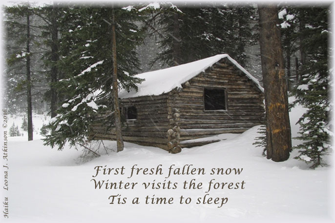 winter, fresh snow, cabin in the forest, Haiku poem