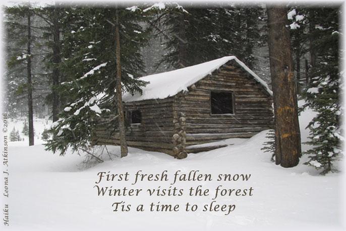 winter, fresh snow, cabin in the forest, Haiku poem