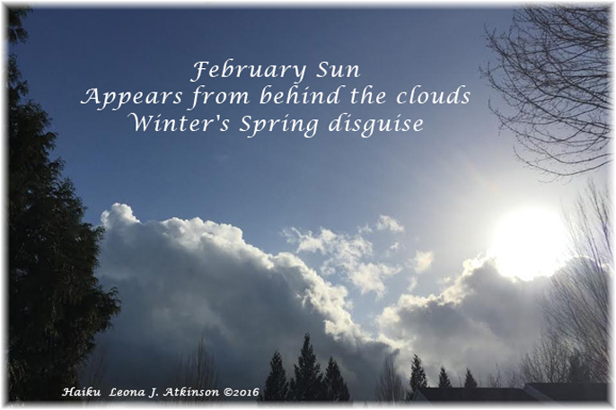 February Sunshine--Haiku