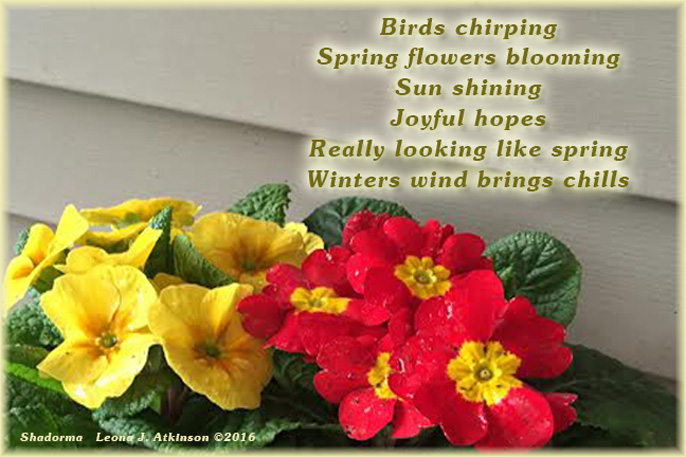 Shadorma poem about weather--signs of spring