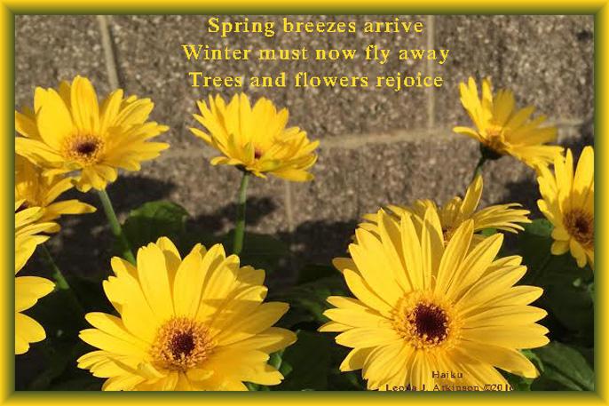 Spring's Arrival--Haiku--flowers