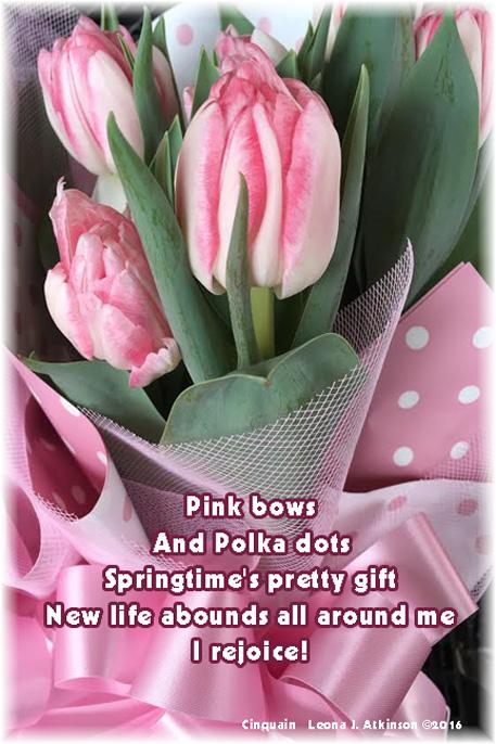 Pink Tulips-Pink Polka Dots-Cinquain poem