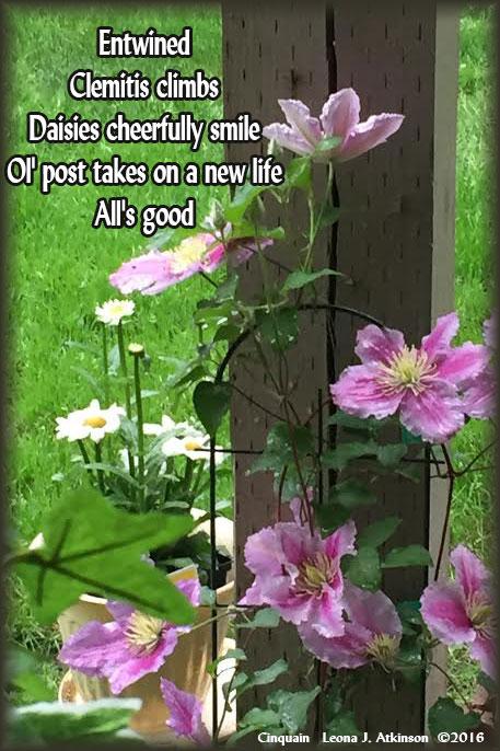 Springtime flowers--Cinquain poem