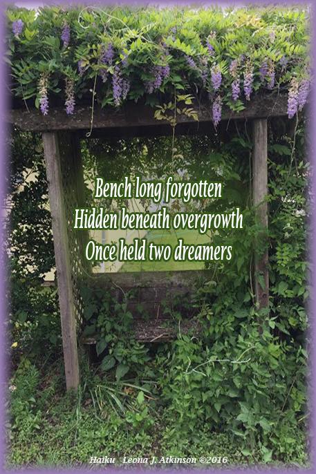 Wisteria-garden-bench-Haiku