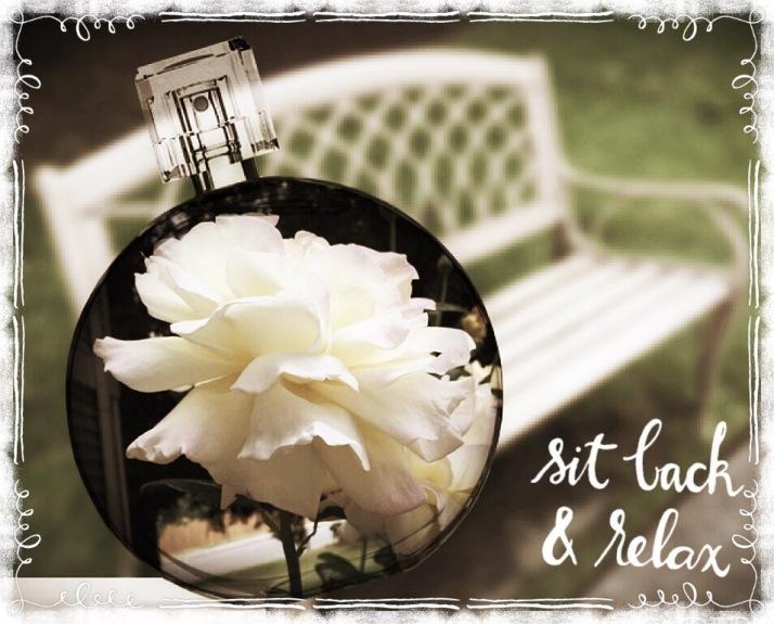 bench, white rose