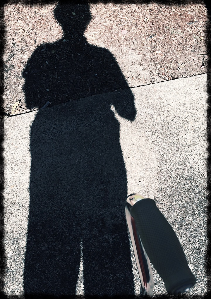 my shadow with cane