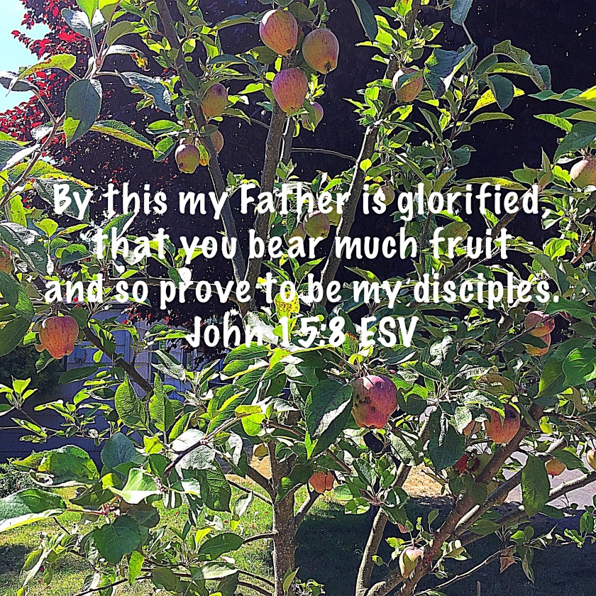 fruitfulness, John 15:8 scripture verse