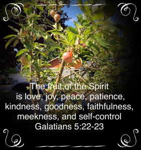 Fruit of the Spirit, Galatians 5:22-23 scripture verse
