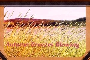 Autumn Breezes blowing grasses
