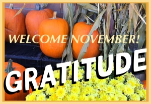 Welcome November, Gratitude, fall harvest picture