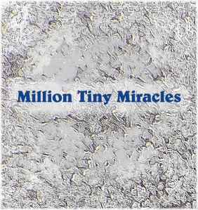 Million Tiny Miracles, snowflakes