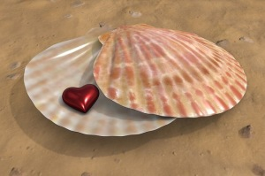 Seashell, heart