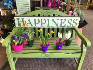 Happiness, bench, spring flowers