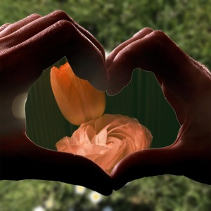 Hands, heart shape, flowers