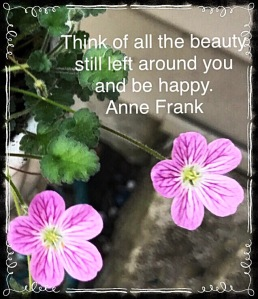 Two pink posies, quote by Anne Frank