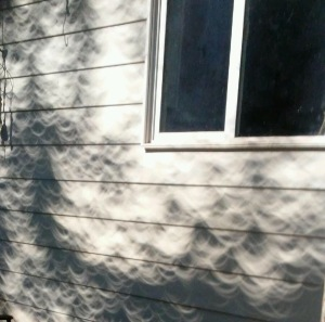 Patterns on house after an Eclipse