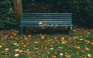 Bench in fall leaves falling