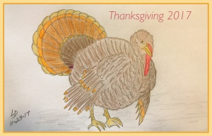 Turkey drawing by Leona J Atkinson 2017