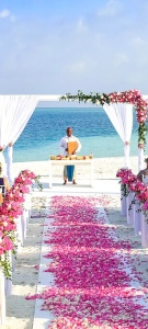Wedding on the beach, isle of rose petals