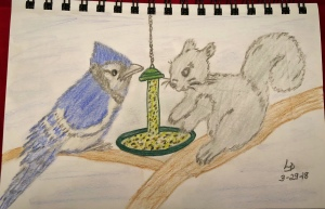 Blue Jay and Squirrel at bird feeder