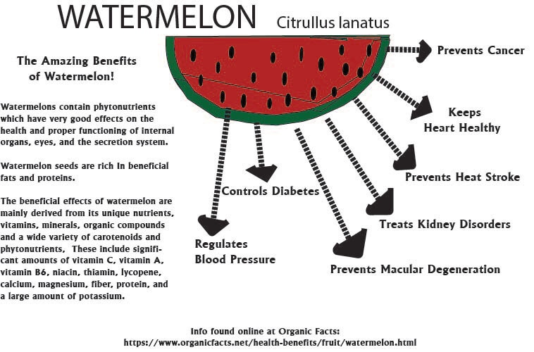 Infograpic on the Benefits of Watermelon