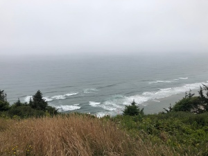 Pacific Ocean at Andersons View Point July 2018