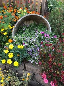 Abundance of flowers