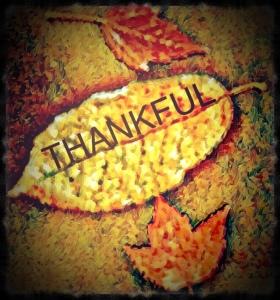 Thankful, leaves