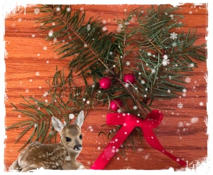 Evergreen, red bow, red berries, baby deer, snowy