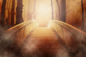 Bridge, golden light