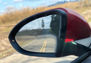 View in my rear view mirror