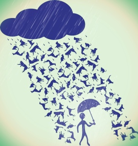 Raining cats and dogs graphic