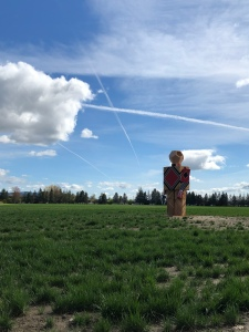 Robot sculpture in field McMinnville,OR 2019
