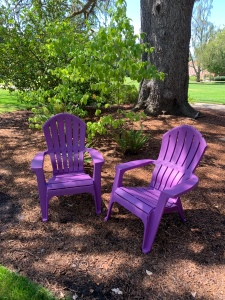 Adirondack lavender chairs beneath trees