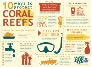 10 Ways You Can Help Save Coral Reefs Infographic
