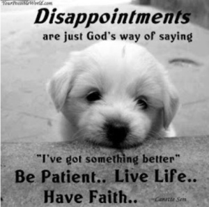 Disappointment quote with pic of a puppy dog