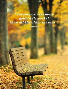 Bench covered with golden leaves and a autumn quote by Jim Bishop