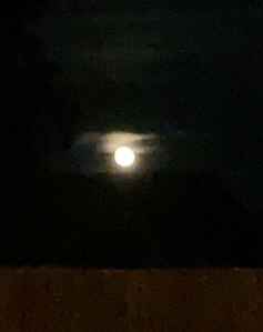 Full Beaver Moon in Oregon  11-13-19