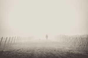 Hiker on a foggy trail