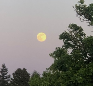 """Flower Moon-May 2020 Supermoon-original photo taken in Oregon, USA by VNM at 8:18pm PST"