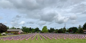 Field of Flags—represent Oregon's fallen soldiers