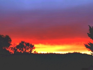 Blazing summer sunset in Oregon-June 2020