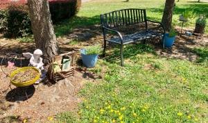 Garden bench under the pine trees