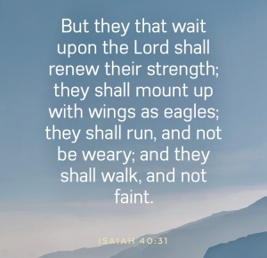 Scripture verse image for Isaiah 40:31